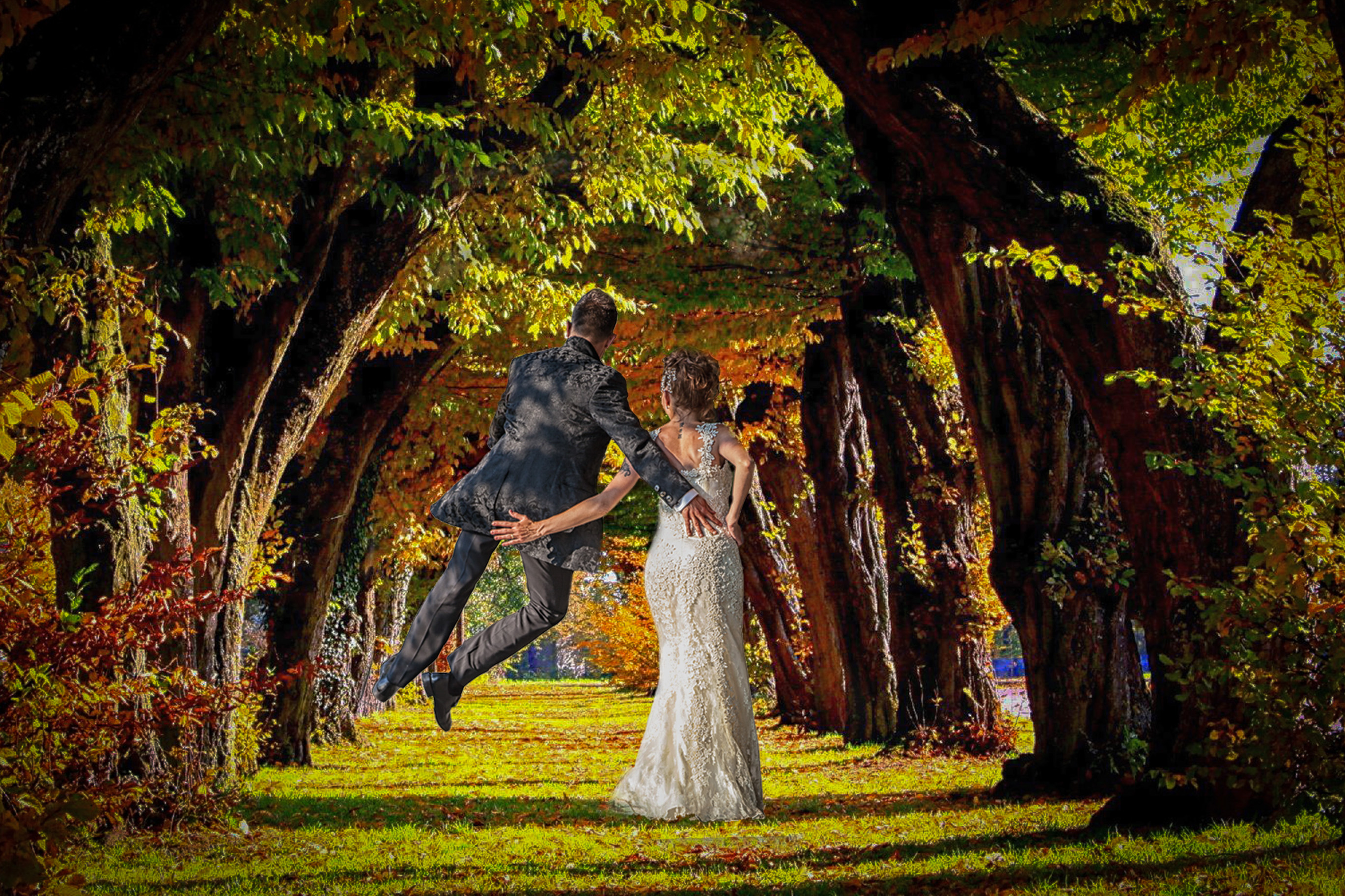 viale-albero,-foglie-colorate,-autunno-161748-2